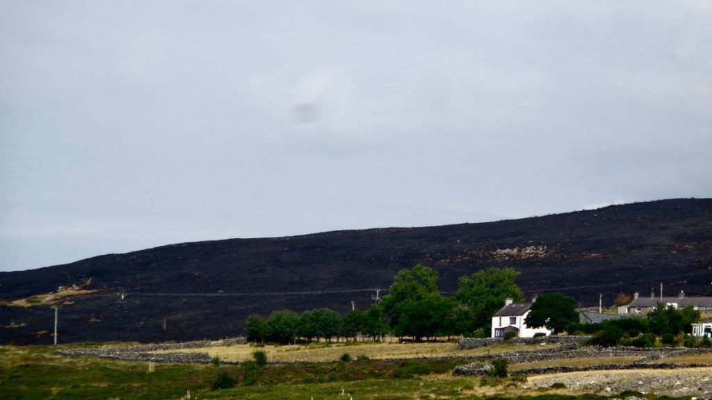 The Other Side of the Burnt Mountain