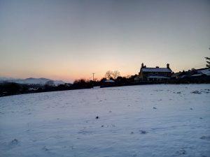 Growing Fields of Snow