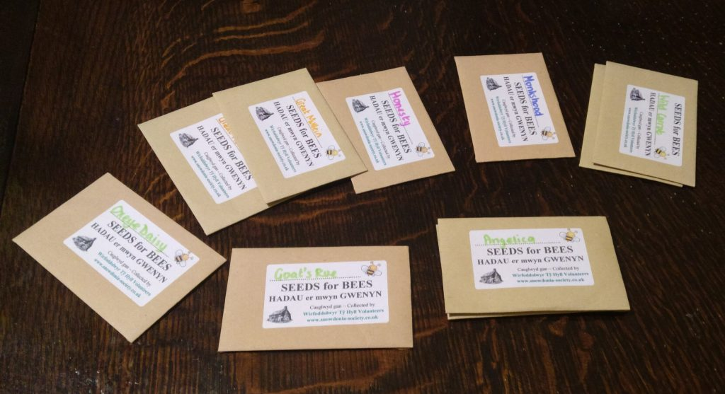 Hand collected wildflower seeds