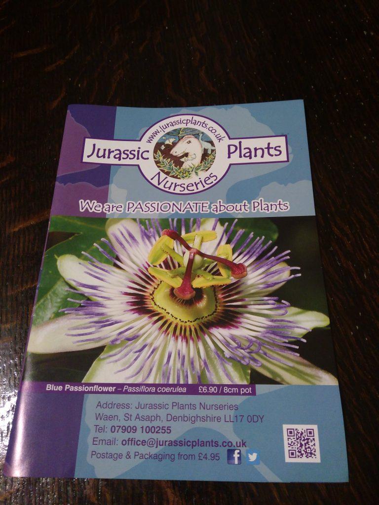 Jurassic Plants Leaflet
